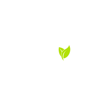 lifesbroth